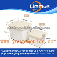 container plastic mould yougo mould