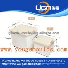 Molde de plástico de recipiente de molde
