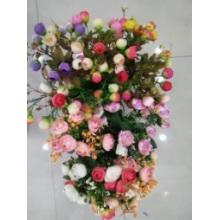 Viele Arten von Kamelie Blumen und Bilderffekt