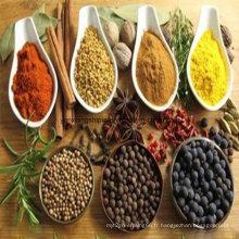 Bonne assiette aromatisée aux saveurs au meilleur prix