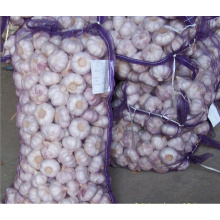 2018 China Knoblauch Preis / Knoblauch Import