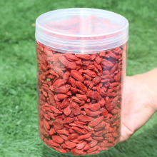New Arrival Super Food Wolfry Goji seco