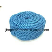 Cuerda de nylon de 3 hilos / poliamidas