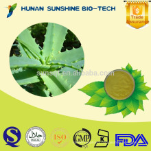 FREE Sample Aloe Vera Extract 200:1 Aloe Vera Gel Freeze Dried Powder