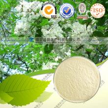 Extrait naturel de poudre en vrac 95% quercétine