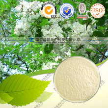 Natural Extract Powder Bulk 95% Quercetin