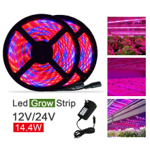 14.4w / μέτρο SMD5050 LED Grow Strip