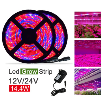 14,4 W / metro SMD5050 LED Grow Strip