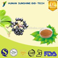 Солнце 0.8% Eleutherisides экстракт элеутерококка для борьбы с усталостью и анти-старения