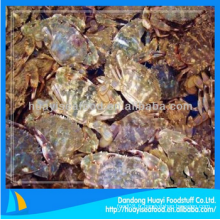 Prix de crabe de boue frais congelé à vendre avec un service supérieur