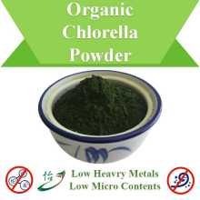 Low Heavy Metals Micro Inhalt Bio Chlorella Pulver