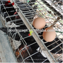 (2017 High Quality, Top Promotion) galinheiro para galinhas poedeiras