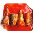 Sardinha enlatada longa vida útil em molho de tomate