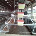 Hotsale automatische Entwurfsschicht-Huhn-Batterie-Käfige für Afrika-Geflügelfarm