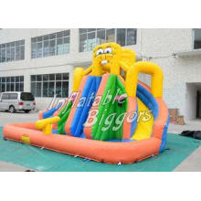 Residential Backyard Inflatable Water Slide Curved Brazil ,