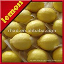 Zitronen in großen Mengen