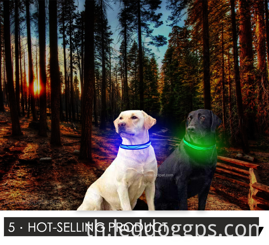 Adjustable Led Pet Dog Collar