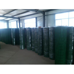 Holland wire Netting
