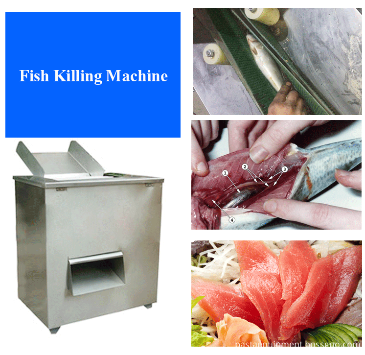 Fish Cutting Machine 05