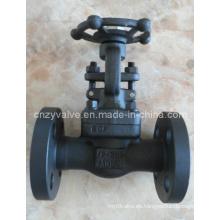 Válvula de compuerta de acero forjado Dn40