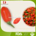 Ningxia hochwertige Bio getrocknete Goji Beeren / Wolfberry / Mispel / neue Ernte