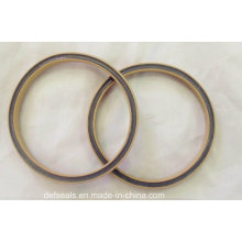 PTFE Spring Energized Seal/Variseal Filled with Silicone
