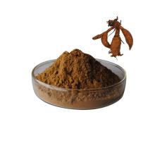 Kudzu Root Extract 40% Isoflavones