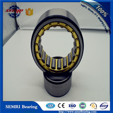 Cylindrical Roller Bearing (NU2324EMC4) High Quality