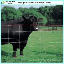 Clôture de terrain peu coûteuse galvanisée de 2,5 mm / 2,0 mm / clôture de bétail / clôture de prairie