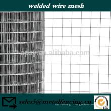 Panneau matériel soudé de maille pour des cages de volière d'oiseau de cage de lapin