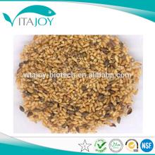 Extracto chino de la semilla de Arborvilea del estándar de GMP, el mejor precio Extracto chino de la semilla de Arborvilea