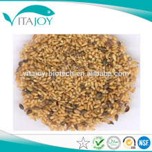 GMP standard Chinese Arborvilea Seed Extract,Best price Chinese Arborvilea Seed Extract powder