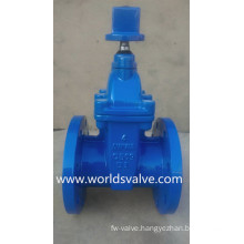 Awwa C509 Ductile Iron Gate Valve for Water