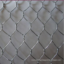Anping Shengyang Wire Bird Screen