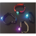 pet neck flash light