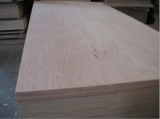 Okoume Plywood / Bintangor Plywood Sheet