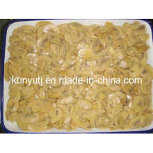 Canned Mushroom Slices with High Quality