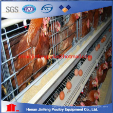 Chicken Raising Cage Cheap Automatic Poultry Equipment for Sale