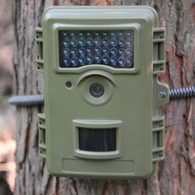 20 months Standby Time Deer Motion Camera