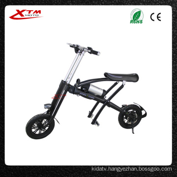 Mini Folding Bike 36V 250W/350W China Electric Bicycle