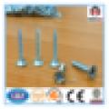 Verzinkte Trockenbau-Schraube / Grobgewinde 3,9 * 35 mm Trockenbau-Schraube für Amerika