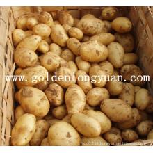 Qualidade de batata fresca e preço competitivo