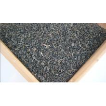 Thé de poudre à Canon (3505)