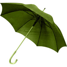 Manual Open Green Frame & Handle Straight Umbrella (BD-64)