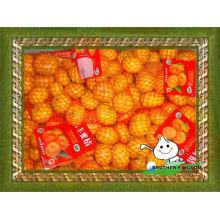 Свежий ребенок оранжевый ребенок мандарин оранжевый