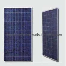 Поликристаллического 275 Вт 36 в панели солнечных батарей (SGP275W-36)