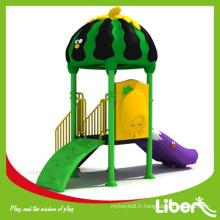 Pare-brise de jardin de la maternelle par la fabrication professionnelle de jeu d'enfants LE.FL.002