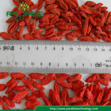 Chinese Herb Goji Berries Wolfberry Dried goji berries