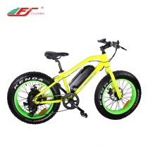 20 inch Mini Fat Tire Ebike