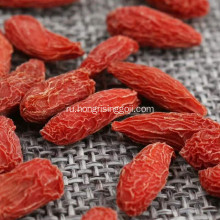 Berry+goji+organic+dried+fruit+good+for+health